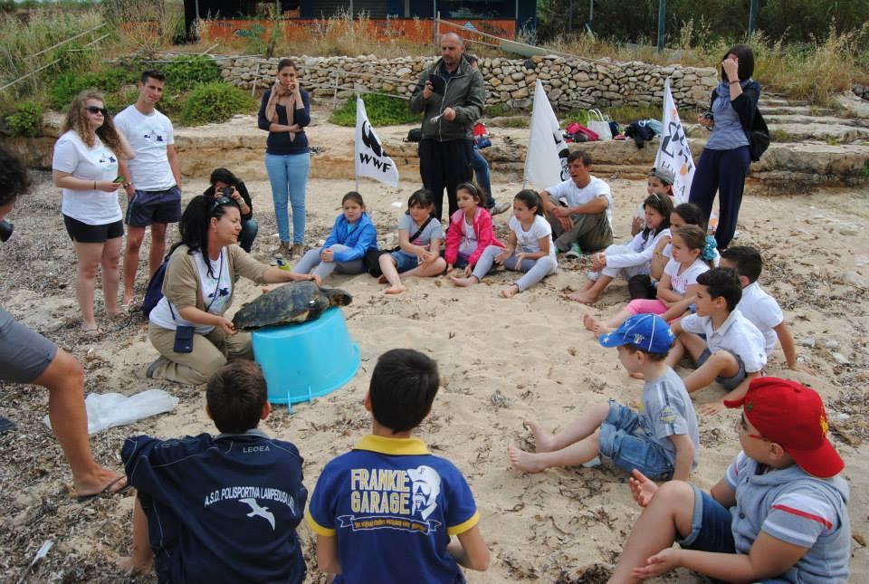 sensibilisation conservation tortues mer lampedusa