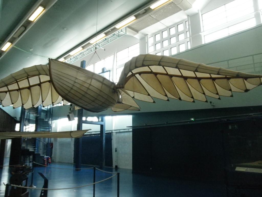 albatros barque ailé