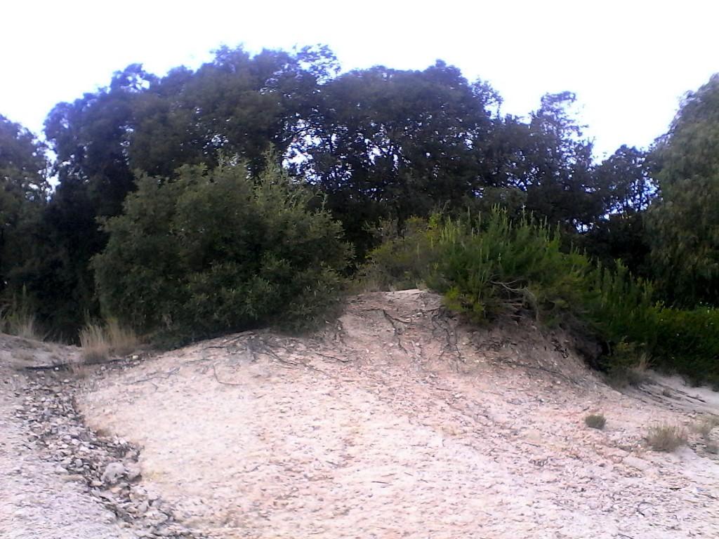 dune solfatara