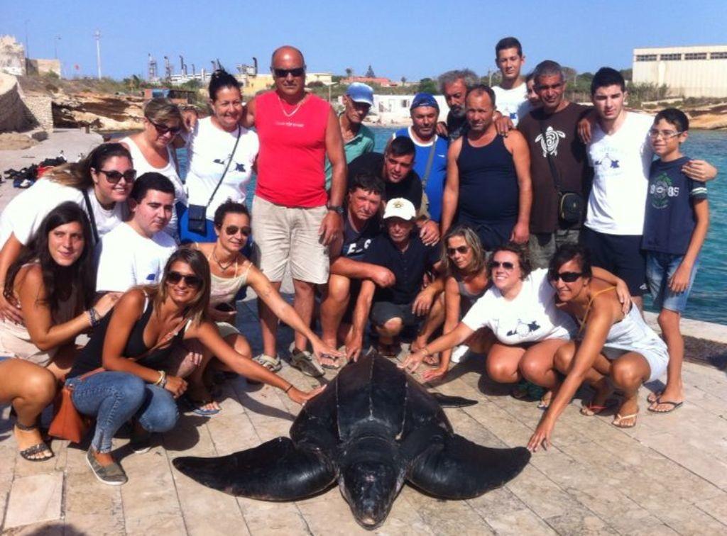 Tartaruga liuto a Lampedusa