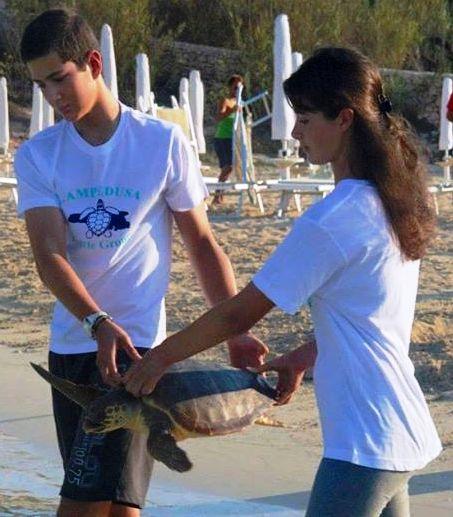 Liberazione di una tartaruga