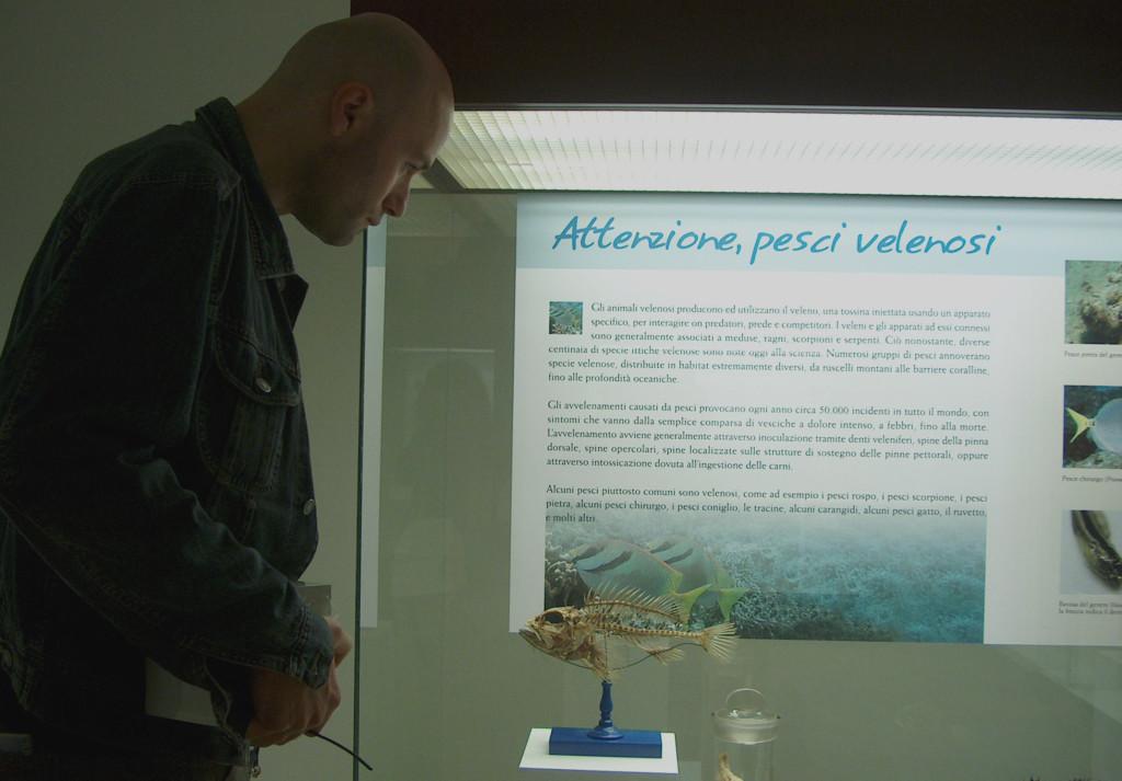 """Il dottor Carnevale davanti ad una vetrina della mostra """"Pesci fuor d'acqua"""" da lui ideata . Museo di Storia Naturale dell'Università di Pisa. 2007"""